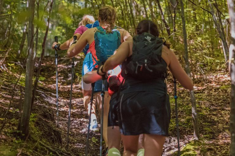 Bergauf mit Stockeinsatz